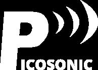 피코소닉 Picosonic